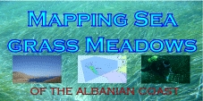 Mapping Sea Grass Meadows